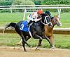 Valiant Boy SBFAR winning at Delaware Park on 6/9/12