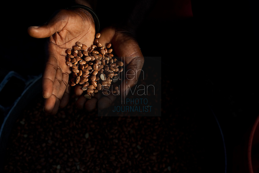 A man sorts beans in the Pechinat tent camp over three weeks after the earthquake that devastated parts of the country. The World Food Programme says it distributes over 8,400 hot meals a day here. The 7.0 earthquake that devastated parts of Haiti on January 12 killed hundreds of thousands of people. January's earthquake killed hundreds of thousands of people and caused significant and lasting structural and economic damage in the Caribbean nation.
