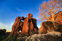Western Australia Kimberleys 5star