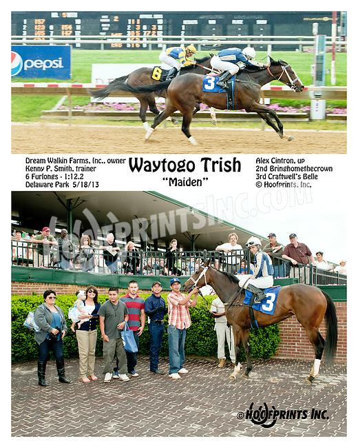 Waytogo Trish winning at Delaware Park on 5/18/13