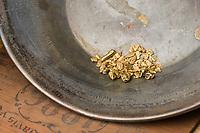 Gold pan with nuggets, arctic, Alaska.