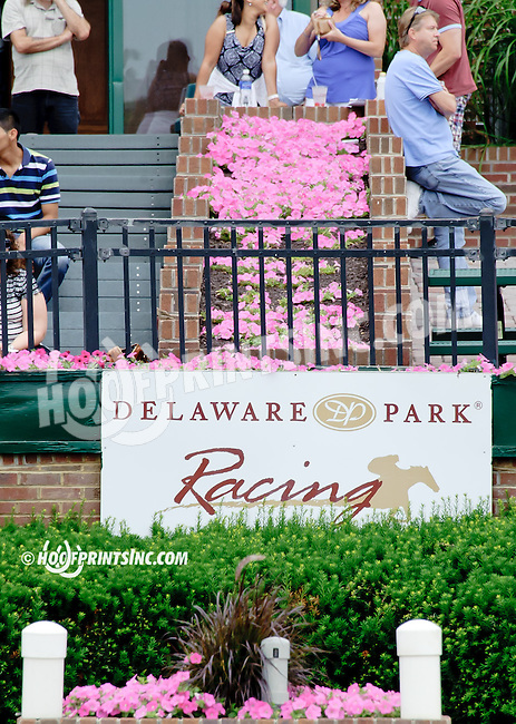flowers at Delaware Park racetrack on 6/19/14