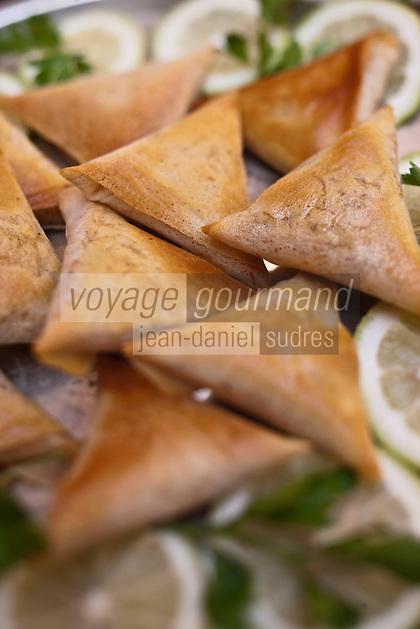 Afrique/Afrique du Nord/Maroc/Province d'Agadir/Tighanimine Elbaz: Ecolodge Atlas Kasbah- Briouats aux crevettes