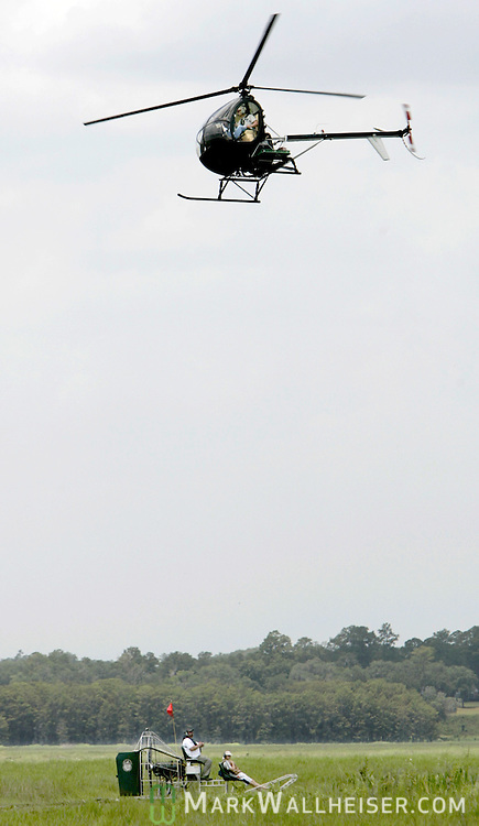 Helicopter pilot Tom Owens hovers and directs two men to an alligator nest so they can harvest the eggs at Lake Miccosukee July 19, 2007.  The 14 men from both the Florida Wildlife Commission and private commercial alligator farms collected 562 eggs at Lake Miccosukee.   (Mark Wallheiser/TallahasseeStock.com)