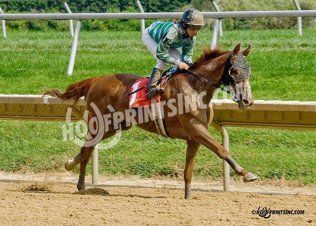 Same Time winning at Delaware Park on 9/4/14
