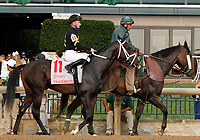 """October 07, 2018 : #11 Tracksmith and jockey Ada Beschizza before the 28th running of The Dixiana Bourbon (Grade 3) $250,000 """"Win and You're In Breeders' Cup Juvenile Turf Division"""" for trainer Todd Pletcher and owner Eclipse Thoroughbred and Robert LaPenta at Keeneland Race Course on October 07, 2018 in Lexington, KY.  Candice Chavez/ESW/CSM"""