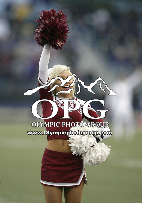 NOV 23, 2007:  Washington State cheerleaders entertained the crowd on hand at Husky Stadium in Seattle.  Washington State won 45-35 over the Washington Huskies at the University of Washington Saturday during the 100th annual Apple Cup in Seattle, WA.