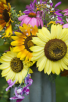 Helianthus sunflowers cut flowers vase with sweet peas, echinacea, etc