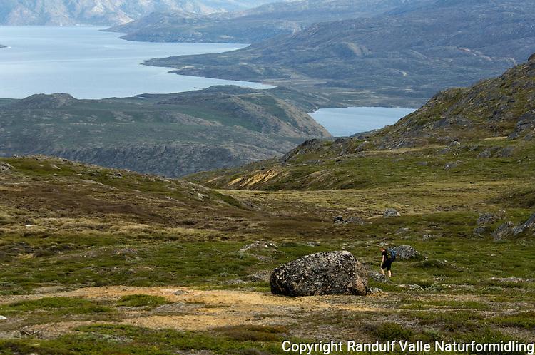 Person går til fots på Vest-Grønland ---- Hiker on West-Greenland