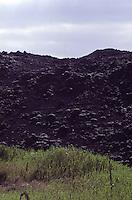 ISLANDA: paesaggio vulcanico. una montagna di lava accanto ad un prato verde.