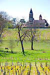 The Wine Route in early spring in Beaujolais, France. The village of Chanes.