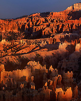 730750038cv1 sunset light turns the hoodoos in the silent city brilliant red and yellow seen from sunset point in bryce canyon national park utah