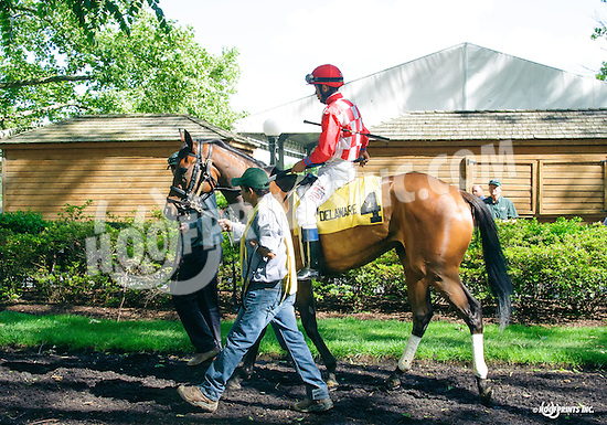 Martini Glass before The Our Mims Stakes at Delaware Park on 6/8/16