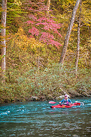 A rare opportunity for a floatrip on the Buffalo National River during the fall.  The river is usually nearly dry this time of year.  The Buffalo National River flows free over swift running rapids and quiet pools for its 135-mile length. One of the few remaining rivers in the lower 48 states without dams, the Buffalo cuts its way through massive limestone bluffs traveling eastward through the Arkansas Ozarks and into the White River