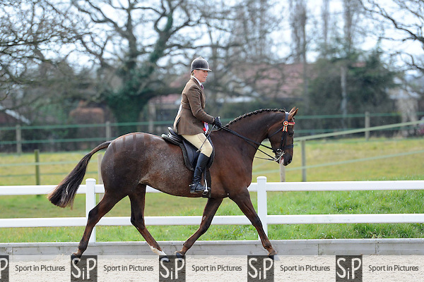 Class 12. Affiliated Spring Showing. Brook Farm Training Centre. Essex. 04/04/2015. MANDATORY Credit Ellen Szalai/Sportinpictures - NO UNAUTHORISED USE - 07837 394578