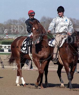Easy Goer, by Alydar, at Aqueduct in March 1989.  Pat Day is up and John Cosentino is on pony.