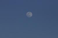 Nova York (EUA), 06/04/2020 - Lua / Estados Unidos - Lua é vista à partir da cidade de Nova York nos Estados Unidos nesta segunda-feira, 6. (Foto: William Volcov/Brazil Photo Press)