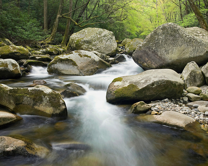 """""""BIG CREEK SPRING"""" -- A large cascade and boulders along Big Creek in Great Smoky Mountains National Park. Spring."""