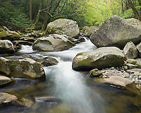 """BIG CREEK SPRING"" -- A large cascade and boulders along Big Creek in Great Smoky Mountains National Park. Spring."