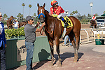 ARCADIA, CA  JUNE 23:#4 American Anthem, ridden by Mike Smith, and the connections after winning the San Carlos Stakes on June 23, 2018, at Santa Anita Park in Arcadia, CA.  (Photo by Casey Phillips/Eclipse Sportswire/Getty Images)
