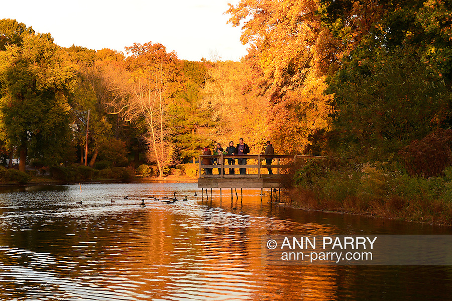 Port Washington, New York, U.S. 27th October 27, 2013. Families on a wood pier throw food to Canadian geese in a pond with colorful reflections of fall foliage, at a North Shore park on Long Island at dusk.