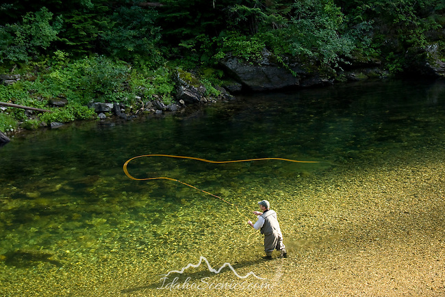 Idaho, North, St. Joe National Forest, Avery. A fly fisherman casts his line in the headwaters of the wild and scenic St. Joe River, world class catch and release fly fishing stream. MR