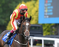Crazy Luck ridden by Oisin Murphy goes down to the start of  The Crouch's Down Maiden Auction Fillies Stakes during Horse Racing at Salisbury Racecourse on 13th August 2020