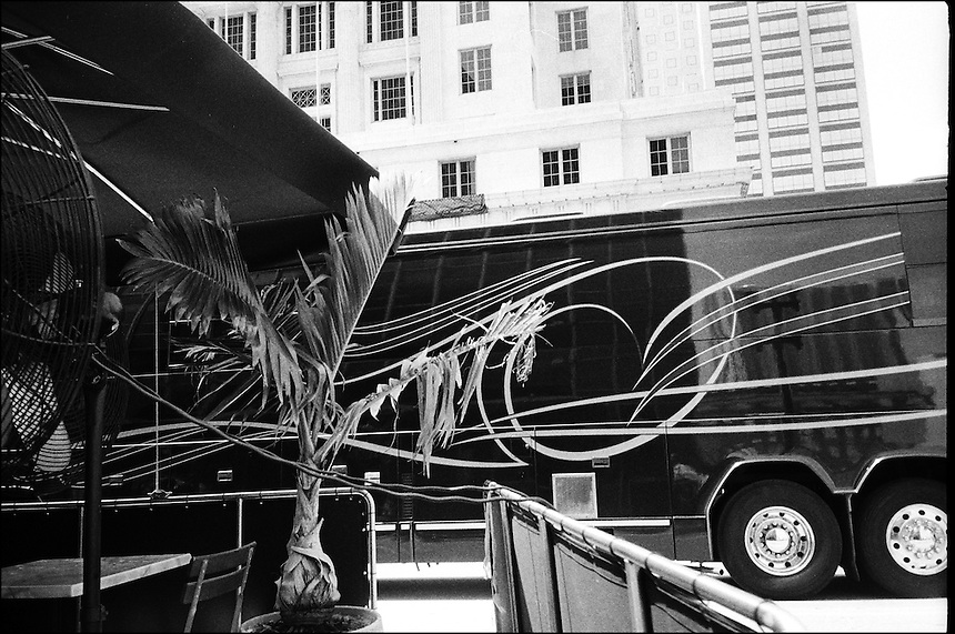 Composition with palm tree<br /> From &quot;The Machine to live in&quot; series. Miami, Florida, 2010