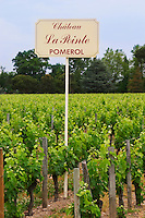A sign in the vineyards saying Chateau La Pointe Pomerol Bordeaux Gironde Aquitaine France