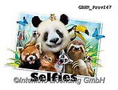 Howard, SELFIES, paintings+++++Zoo Selfie,GBHRPROV147,#Selfies#, EVERYDAY ,panda,pandas