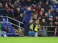 26th November 2019; Cardiff City Stadium, Cardiff, Glamorgan, Wales; English Championship Football, Cardiff City versus Stoke City; Neil Harris, Manager of Cardiff City gives instructions to his players - Strictly Editorial Use Only. No use with unauthorized audio, video, data, fixture lists, club/league logos or 'live' services. Online in-match use limited to 120 images, no video emulation. No use in betting, games or single club/league/player publications