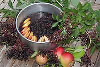 Holunderpunsch, Fliederbeer-Punsch, Fliederbeersaft, Holundersaft, reife Holunderbeeren in einem Topf, in dem sie zu Saft gekocht werden sollen, zusammen mit Apfel, Apfelscheiben, Äpfeln, Schwarzer Holunder, Fliederbeere, Sambucus nigra, Common Elder, Elderberry, Sureau commun, Sureau noir
