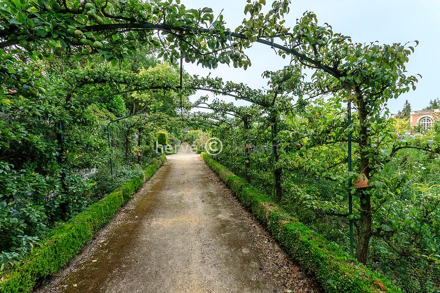 France, Sarthe (72), Le Lude, château et jardins du Lude, le potager, arche de fruitiers