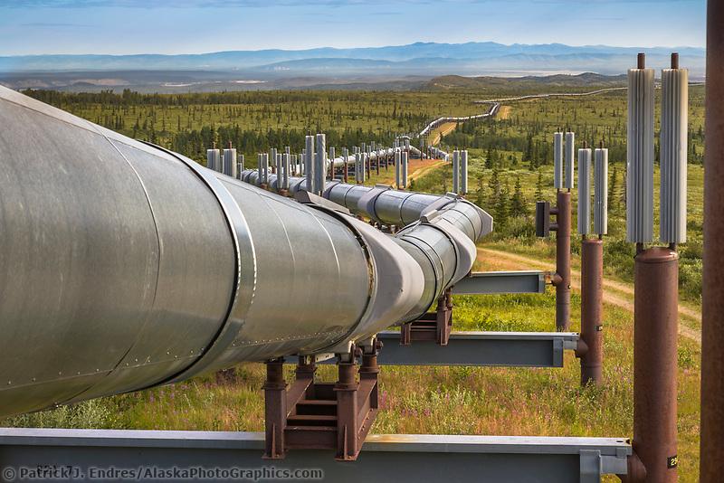 Trans Alaska oil pipeline traverses the tundra landscape of interior Alaska, south of Delta Junction.