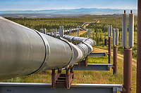 Trans Alaska oil pipeline traverses the tundra landscape of interior Alaska, south of Delta Junction.