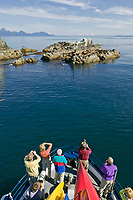 Tourists view Sea Lions, Prince William Sound, Alaska