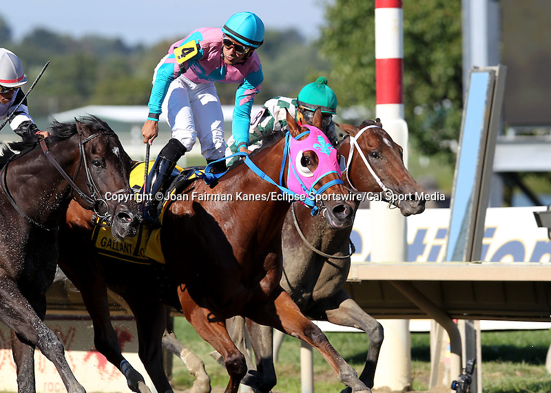 September 19, 2015. #4 Trouble Kid, Joshua Navarro up, wins the  $300,000, grade III Gallant Bob Stakes, six furlongs for three-year-olds, at  Parx Racing in Bensalem, PA. Trainer is Ramon Preciado, owner is Barbara Hopkins. (Joan Fairman Kanes/ESW/CSM)