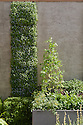 "Living wall and herb and vegetable planters, Mark Gregory's ""Children's Society Garden"", RHS Chelsea Flower Show 2009."