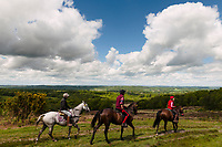 Horse riders, Ashdown Forest, Sussex, UK, May 20, 2017. Picturesque Ashdown Forest stretches across the countries of Surrey, Sussex and Kent, and is the largest open access space in the South East of England. It is famous as the geographical inspiration for the Winnie the Pooh stories and is popular with fans of the characters.