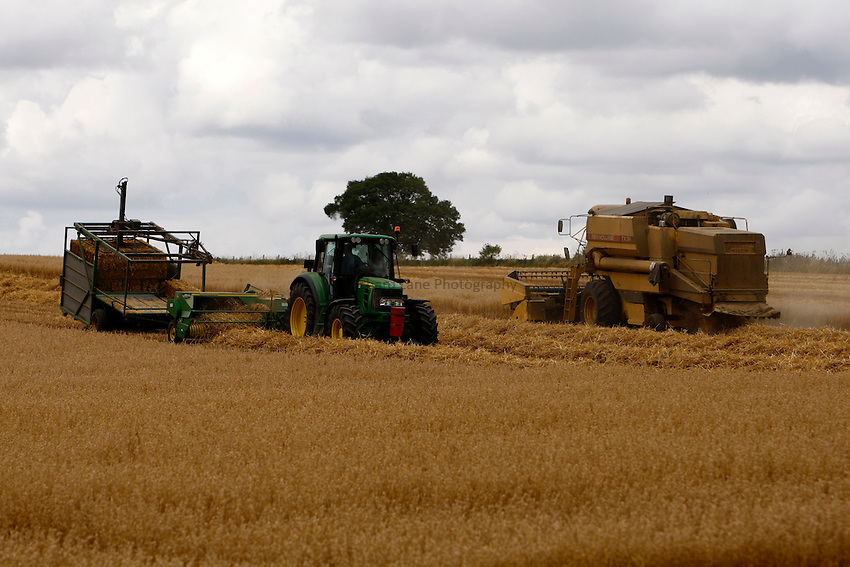 Photo: Richard Lane/Richard Lane Photography. Grain harvest at Glympton Oxfordshire. A New Holland combine harvester cuts winter oats as a tractor pulls a baler and bale staking sledge. 01/08/2010.