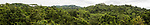 A panoramic view of the canopy of a tropical lowland semi-deciduous rainforest in Panama, seen from the observation tower at the Panama Rainforest Discovery Center near Gamboa.