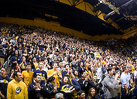CAL fans root for California during the game against Stanford at Haas Paviliion in Berkeley, California on March 6th, 2013.  Stanford defeated California, 83-70.