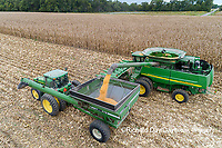 63801-12611 Harvesting corn and unloading into grain cart in fall-aerial  Marion Co. IL