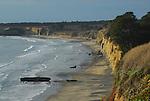 Ano Nuevo State Reserve, Cove Beach