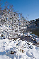 Shelby Farms pond in Memphis after first snowfall