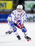 Uppsala 2013-11-13 Bandy Elitserien IK Sirius - IFK Kung&auml;lv :  <br /> Kung&auml;lv Robin Mohl&eacute;n  i aktion <br /> (Foto: Kenta J&ouml;nsson) Nyckelord:  portr&auml;tt portrait
