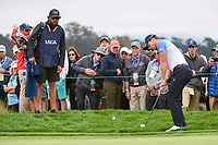 Danny Willett (GBR) chips on to 6 during round 2 of the 2019 US Open, Pebble Beach Golf Links, Monterrey, California, USA. 6/14/2019.<br /> Picture: Golffile | Ken Murray<br /> <br /> All photo usage must carry mandatory copyright credit (© Golffile | Ken Murray)