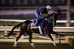 OCT 26: ,mib. gallops at Santa Anita Park in Arcadia, California on Oct 26, 2019. Evers/Eclipse Sportswire/Breeders' Cup
