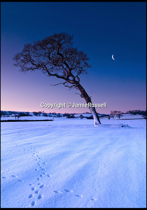 BNPS.co.uk (01202 558833)<br /> Pic: JamieRussell/BNPS<br /> <br /> ***Please Use Full Byline***<br /> <br /> A snowy dawn at Ashey Down. <br /> <br /> Stunning photographs have revealed a turbulent side to the normally genteel Isle of Wight.<br /> <br /> The seemingly benign south coast holiday destination has been catalogued over a stormy year by local photographer Jamie Russell, and his astonishing pictures reveal the dramatic changes in weather that roll across the UK in just 12 months.<br /> <br /> Lightning storms, ice, floods, gales and blizzards have all been captured by the intrepid photographer who frequently got up in the middle of the night to capture the climatic chaos.<br /> <br /> Looking at these pictures prospective holidaymakers could be forgiven for thinking twice about a gentle staycation on the south coast island.