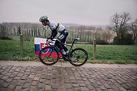 World Champion Peter Sagan (SVK/Bora-Hansgrohe) riding the gutter up the Taaienberg (& passing a slovakian flag)<br /> <br /> 61th E3 Harelbeke (1.UWT)<br /> Harelbeke - Harelbeke (206km)
